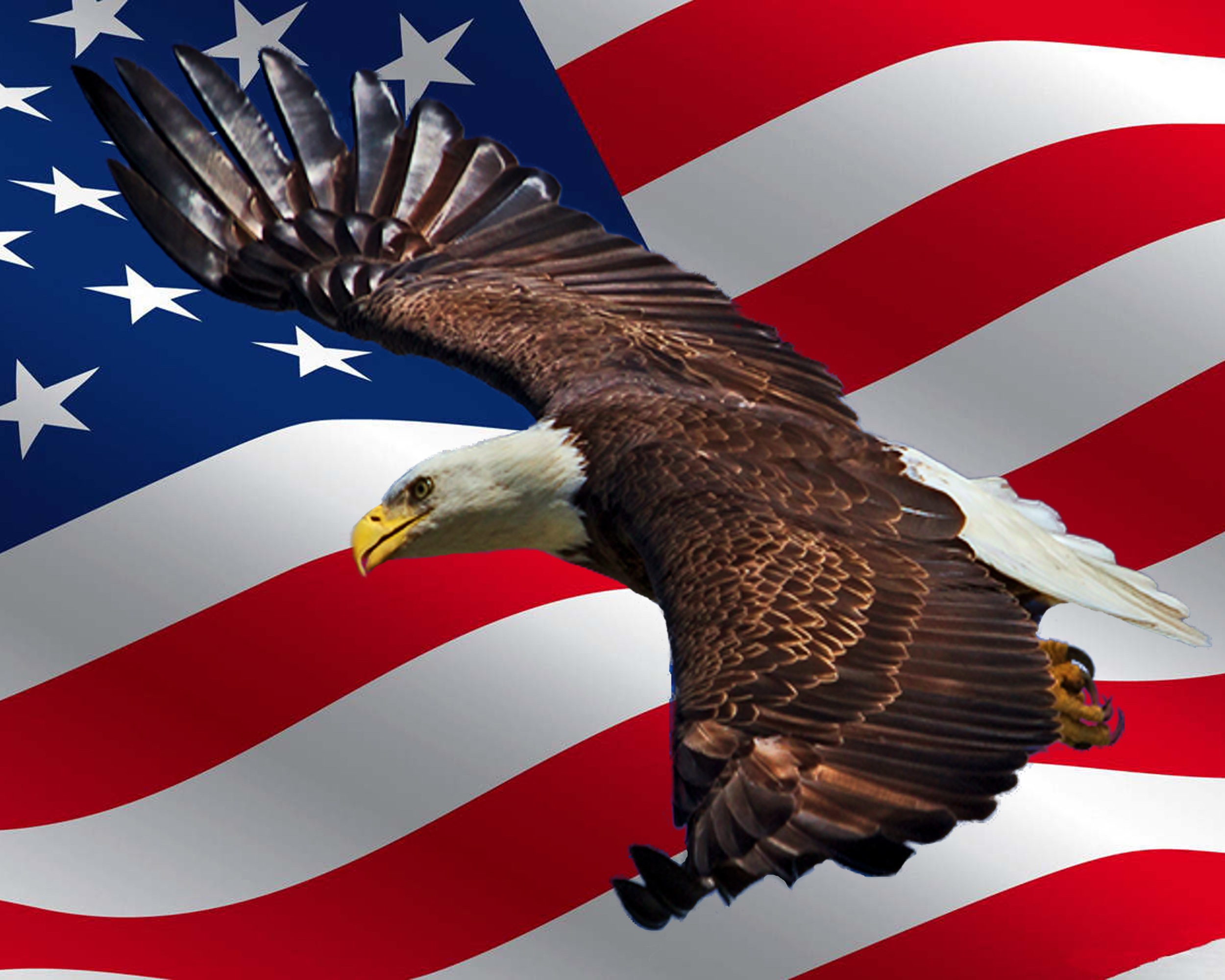 Let's pray for the true Spirit of America of our Founding Fathers returns to our land and families before it is too late..