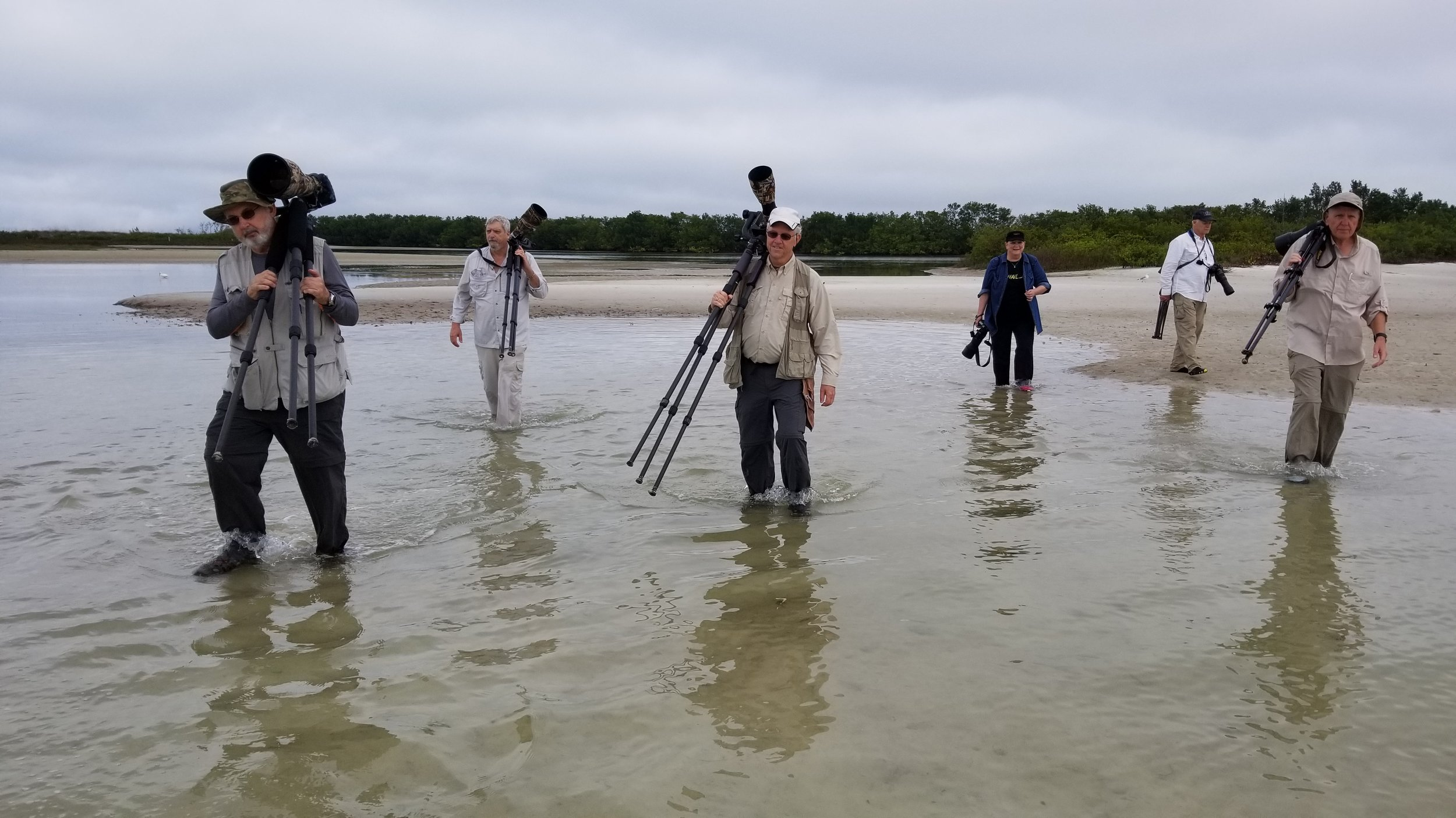 Hard at work trudging through the swamp, wish they would drain it...(second from left is Mr Doohickey)...Photo courtesy of Maxis Gamez..