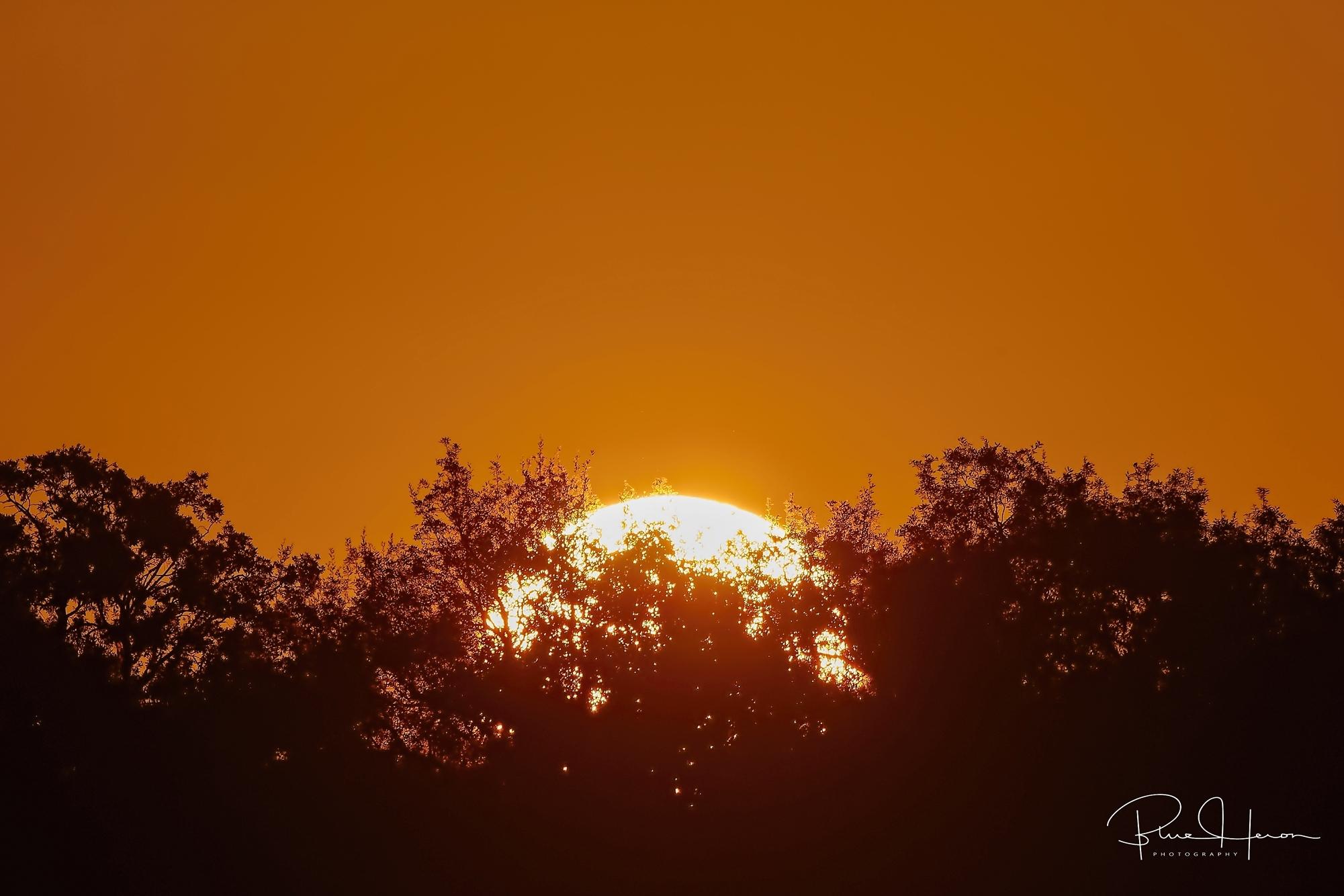 Morning sun-fire on the horizon..