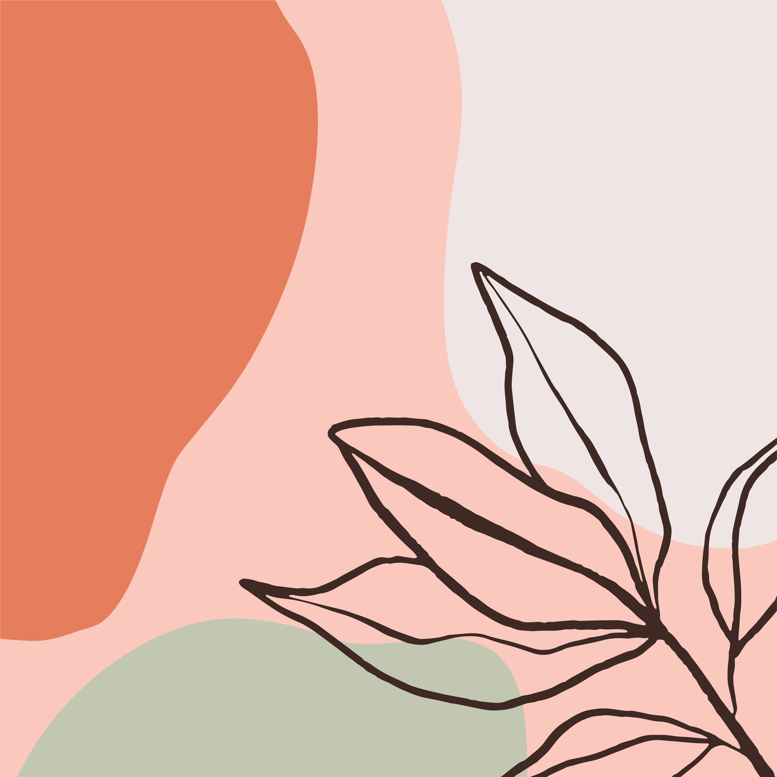 botanicalartboards-03.jpg