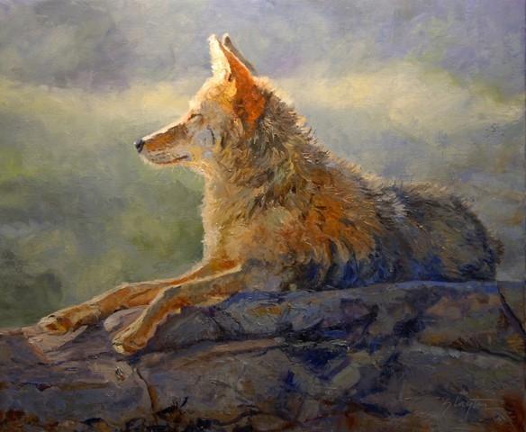God's Dog