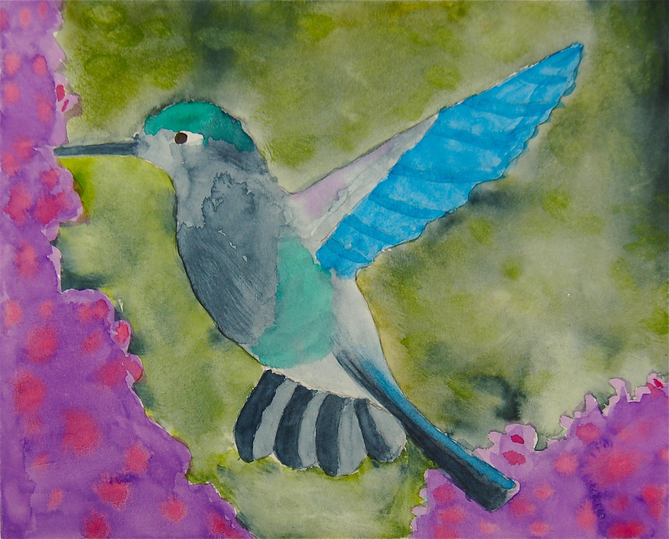 humingbird.JPG