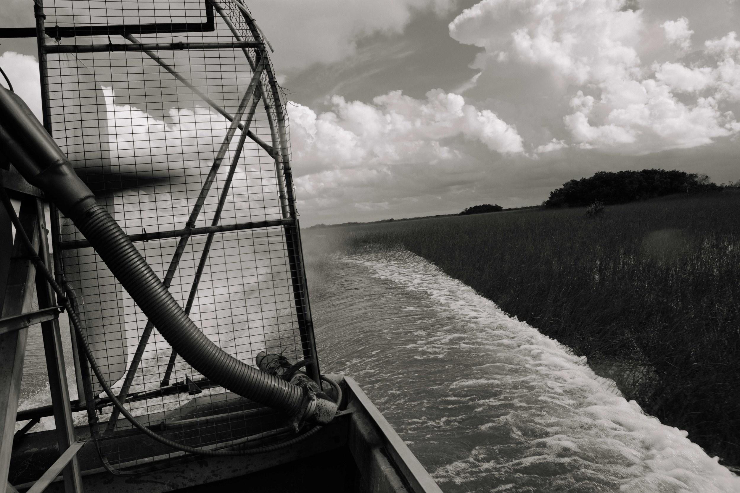 Air_Boat_everglades-10.jpg