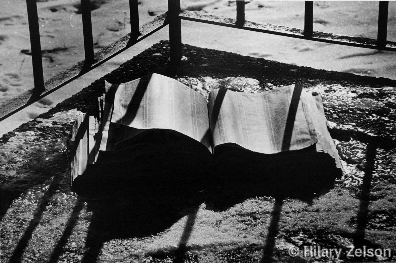 "#10 ""Mettalic Shadows"" new ©.jpg"