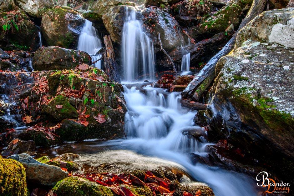 Dark Hollow Falls, Shenandoah, VA.