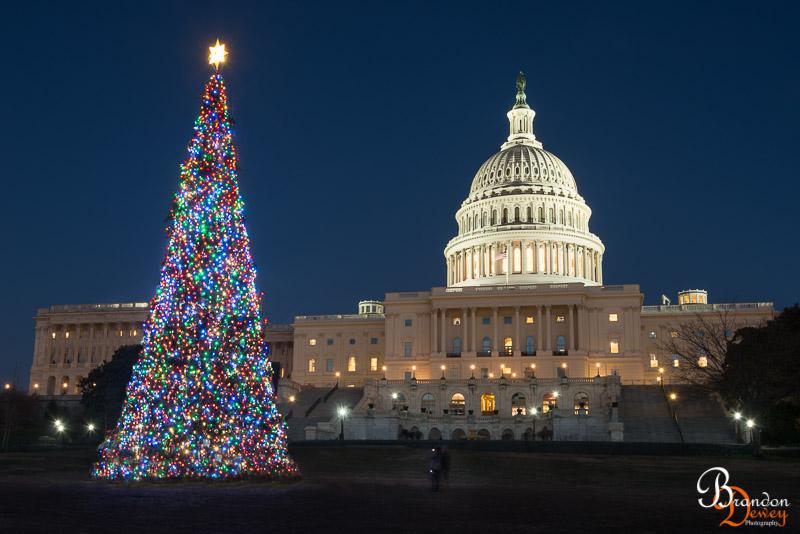 The Capital, Washington D.C.  Link to Photo