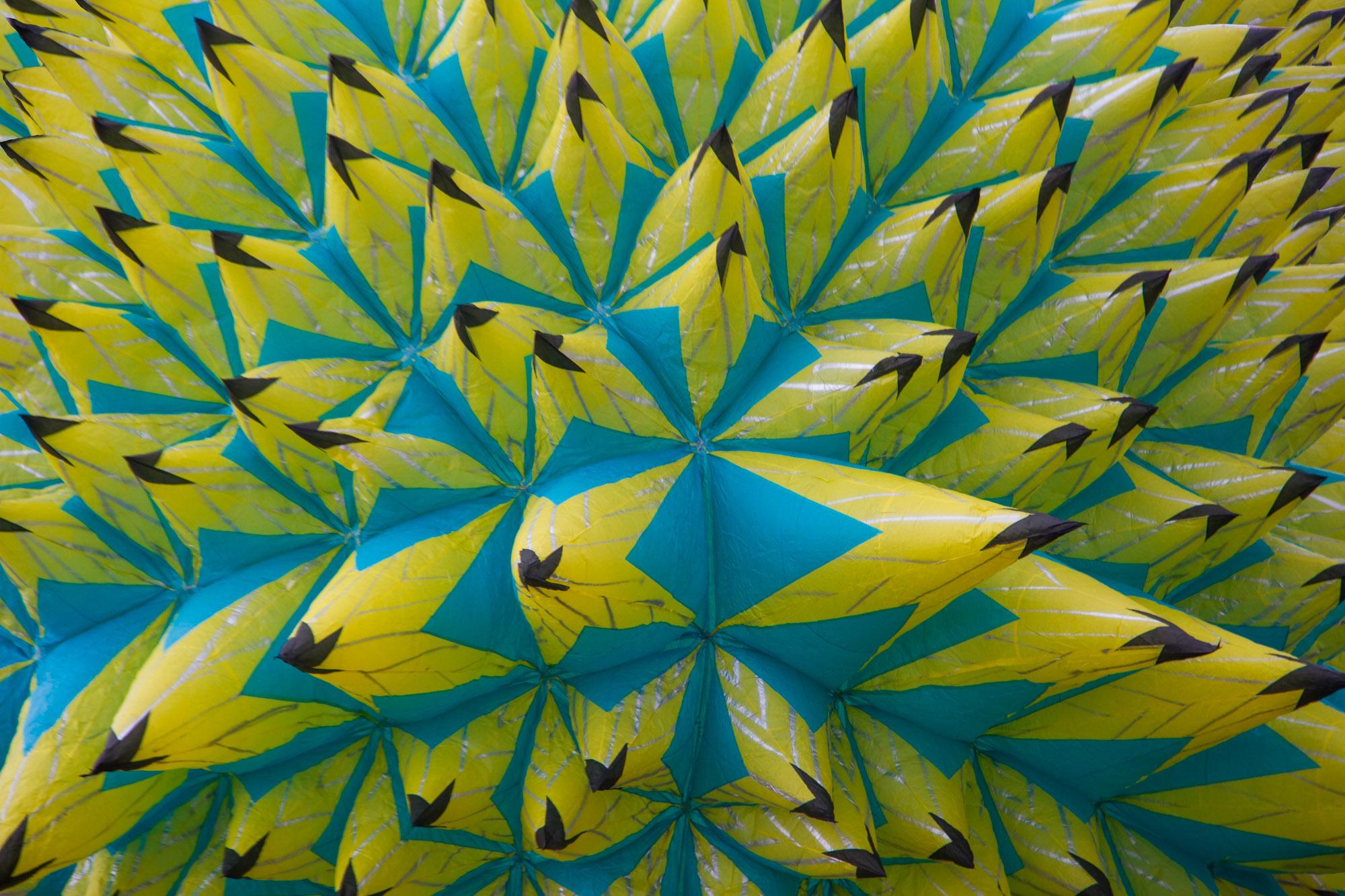 Porcupine   CantoyaFest: Pátzcuaro, Michoacán, Mexico — Sunday, July 23, 2017