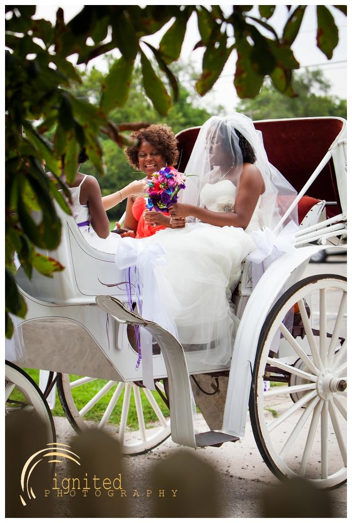 ignited Photography Dan Courtney Latterner Wedding Cobblestone Farm Ann Arbor Brighton Howell Pinckney Michigan_036.jpg