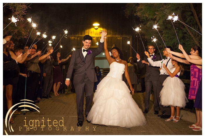 ignited Photography Dan Courtney Latterner Wedding Cobblestone Farm Ann Arbor Brighton Howell Pinckney Michigan_041.jpg