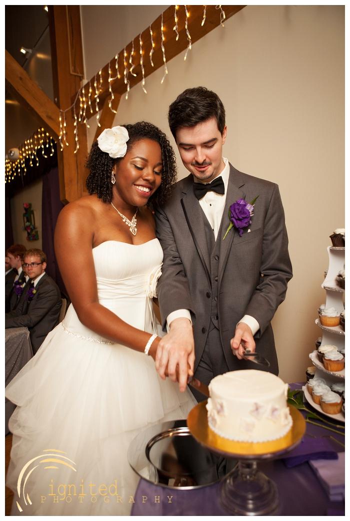 ignited Photography Dan Courtney Latterner Wedding Cobblestone Farm Ann Arbor Brighton Howell Pinckney Michigan_026.jpg
