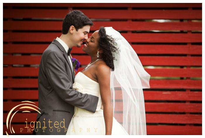 ignited Photography Dan Courtney Latterner Wedding Cobblestone Farm Ann Arbor Brighton Howell Pinckney Michigan_023.jpg