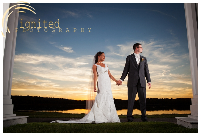 ignited Photography Shawn Tuck Erin Shwartz Wedding Portraits Waldon Woods Gulf Course Hartland Howell Brighton Michigan_025.jpg