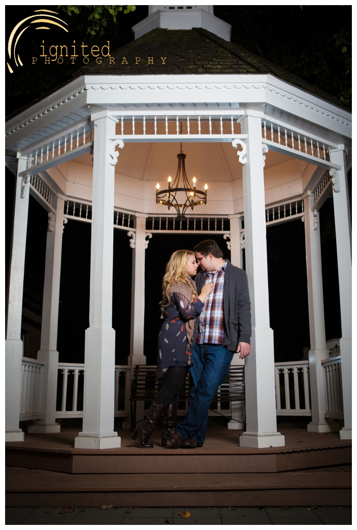 ignited Photography Tom Kustra Courtney Bann Engagement Portraits Kensington Mertro Park Downtown Milford Michigan_493.jpg