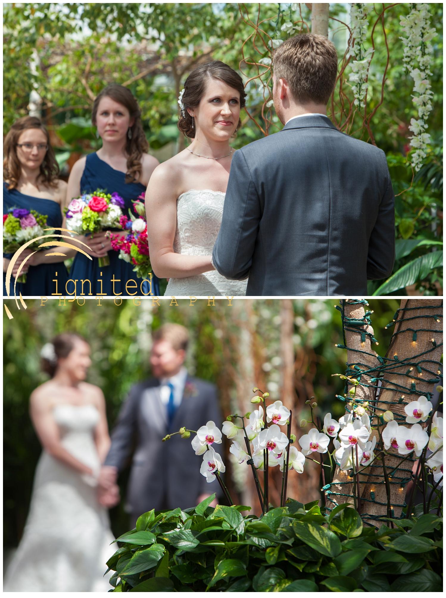 Heintzelman Wedding_12.jpg