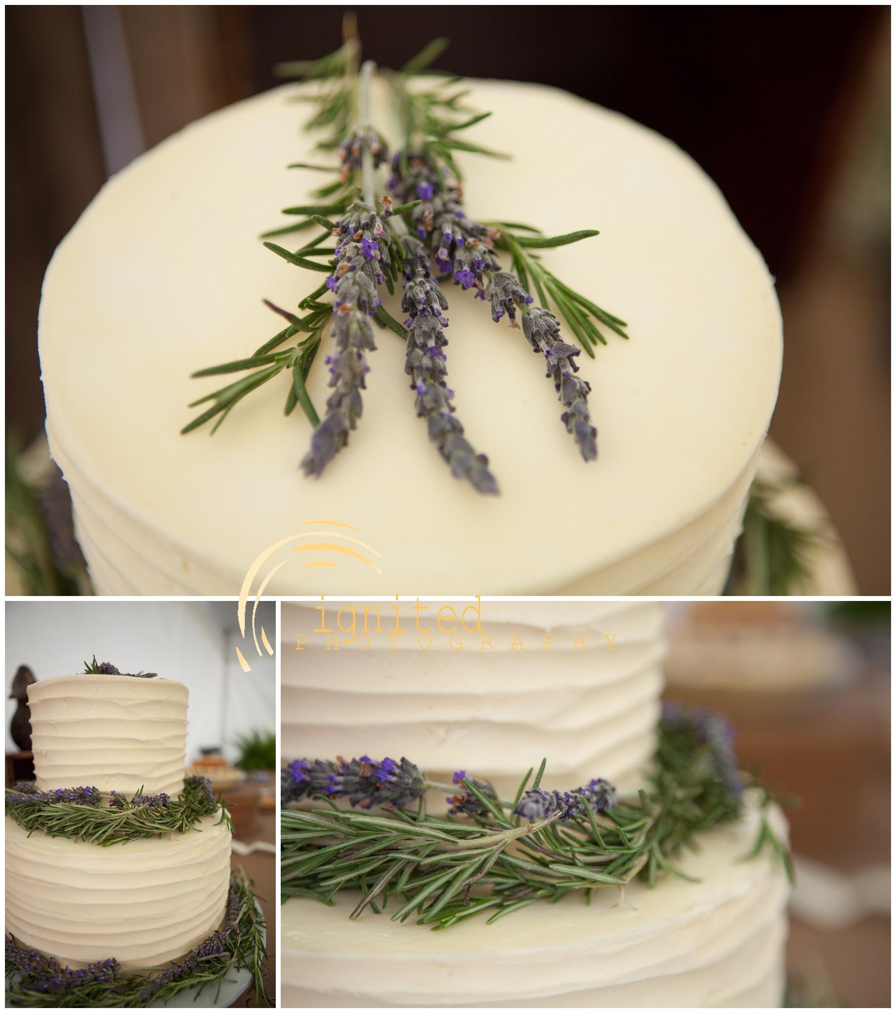 Gattes Wedding Reception_0007.jpg