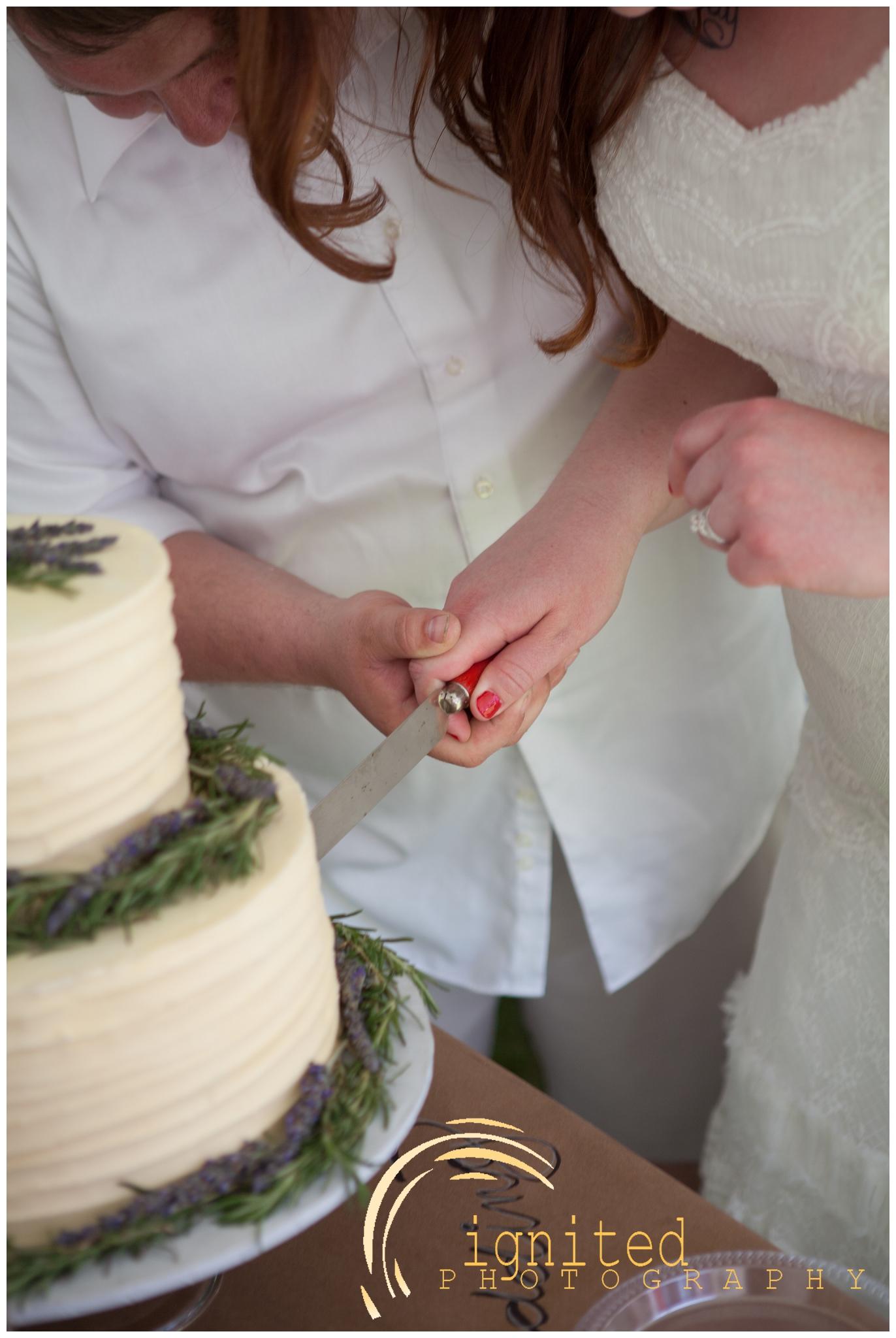 Gattes Wedding Reception_0010.jpg