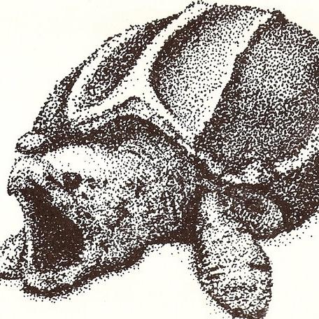 alligator_snapping_turtle_by_toobelowpar.jpg
