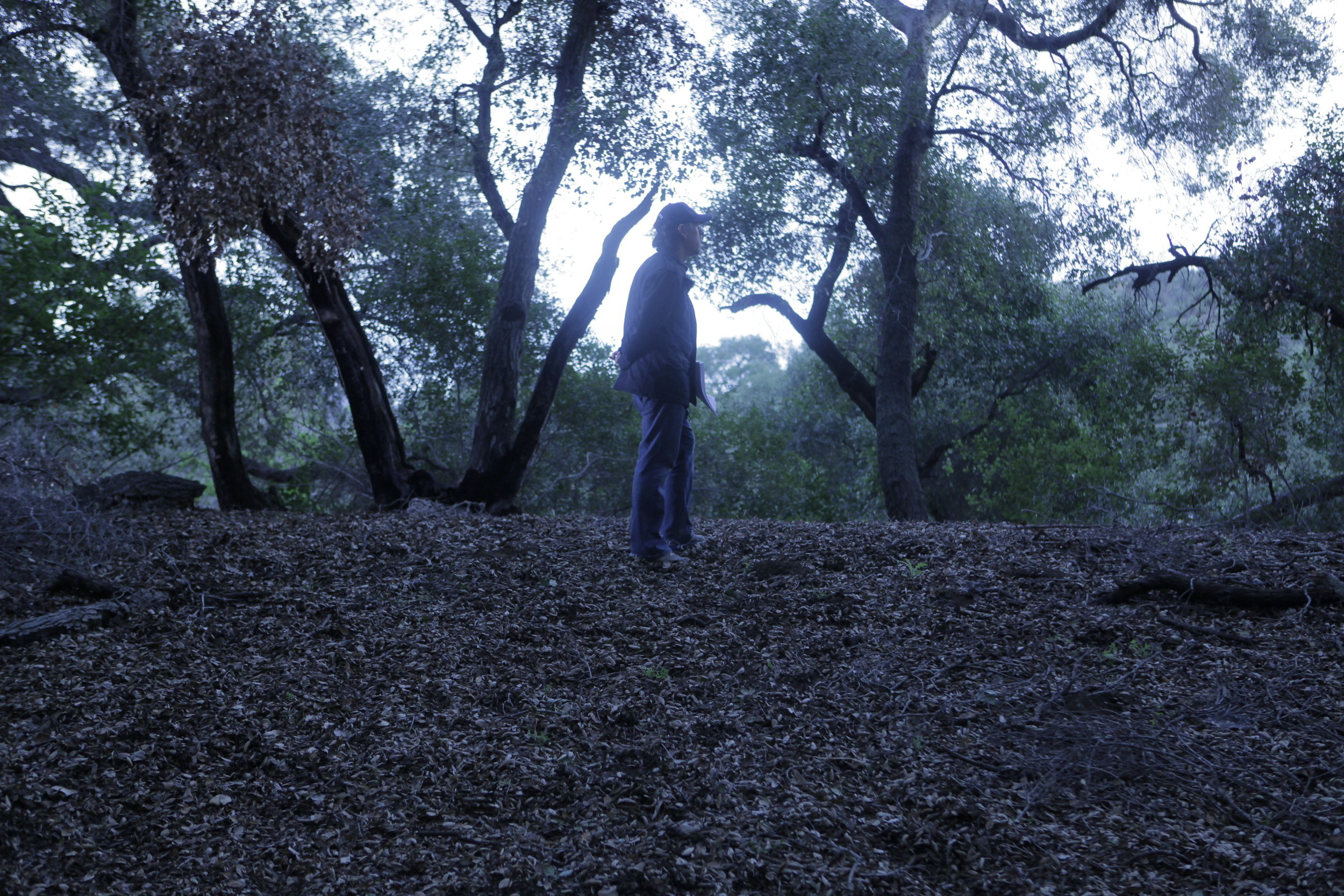 In the Woods on The Hungover Games