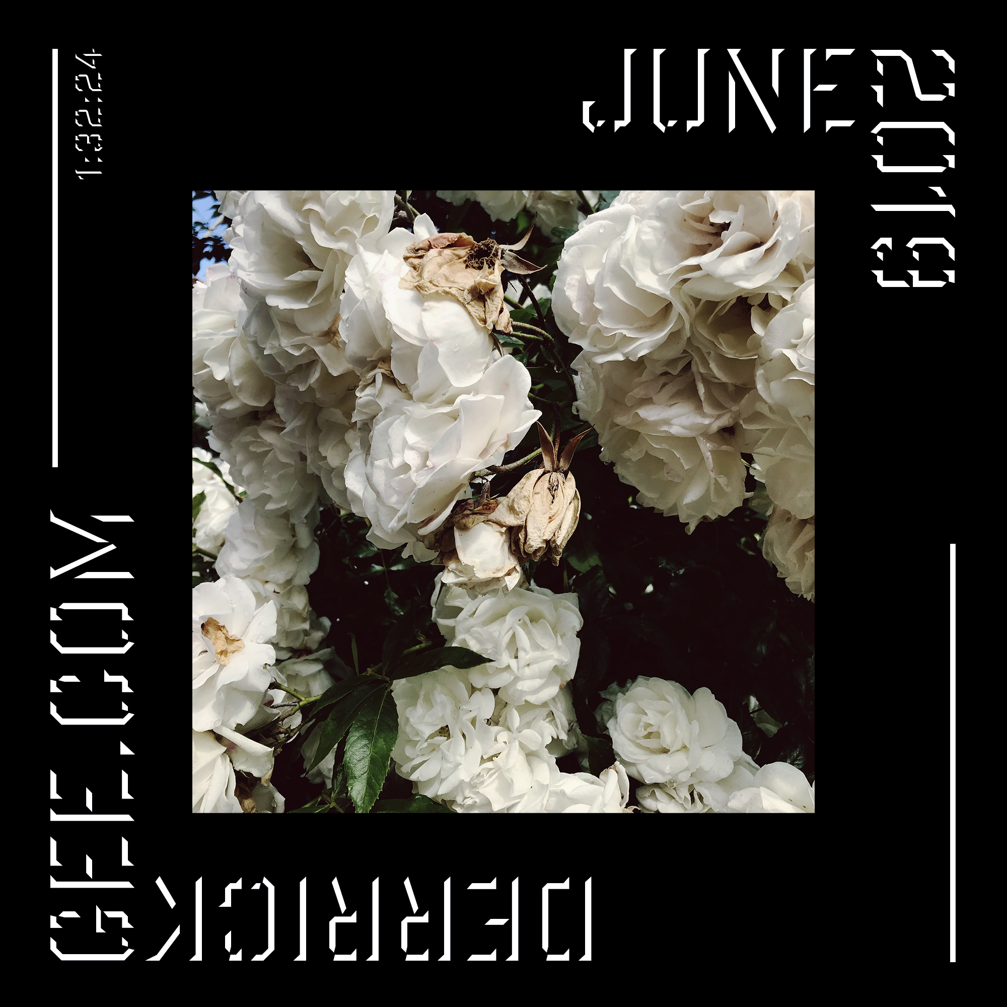 2019_June.jpg