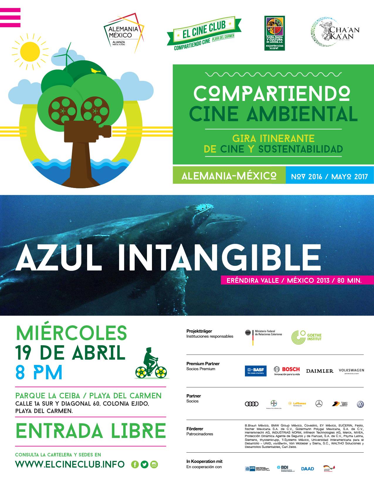 Azul_Intangible_Cozumel-37.jpg