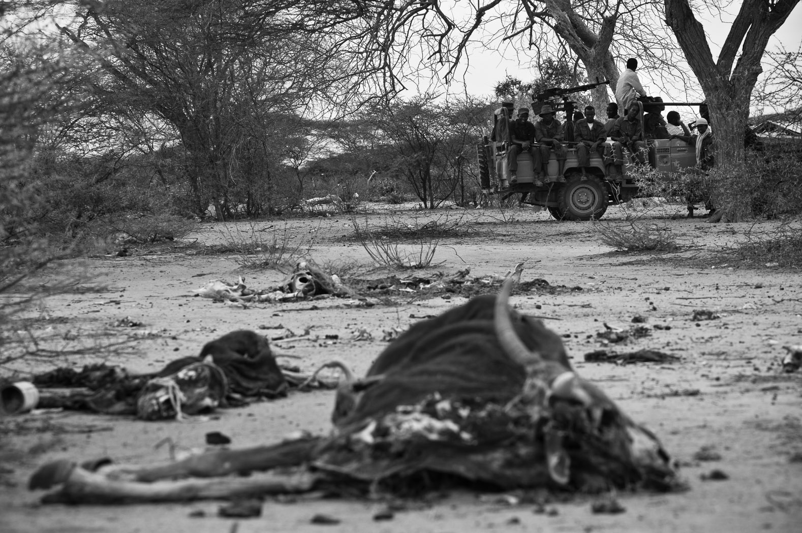 Soldiers with a Somali militia sit in their technical behind the rotting carcasses of cattle, just outside the Somali border town of Dhobley, just five kilometres from the Kenyan border. When surface water catchments dried out in the area, pastoralists brought their cattle to Dhobley for water from the town's two boreholes. But with only pumped water available, there was no grass for the cattle to graze upon, starving them to death.  Some of the first effects of the drought were the loss of livestock and failed harvests, with many families losing their entire livelihood.