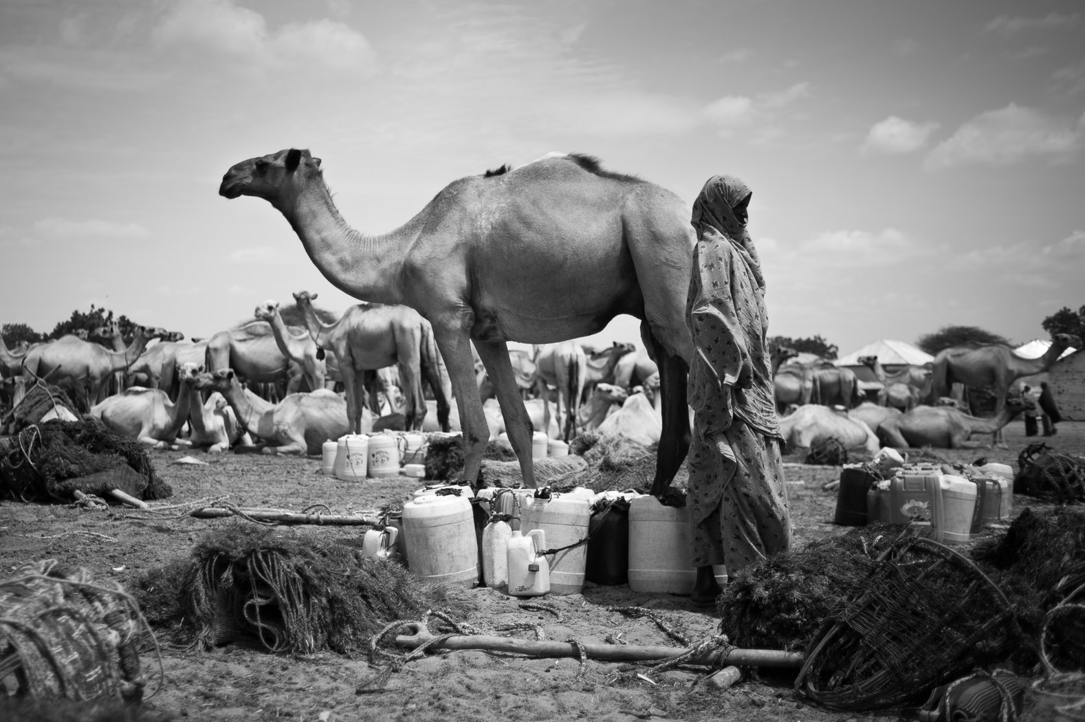 A woman collects water to transport back to her home by camel in the Somali border town of Dhobley. The town has just two boreholes for approximately 5000 households, and many of those fleeing from all over South-Central Somalia have passed through Dhobley on their way to Kenya's Dadaab refugee camp, further straining the resources for an already weakened community.