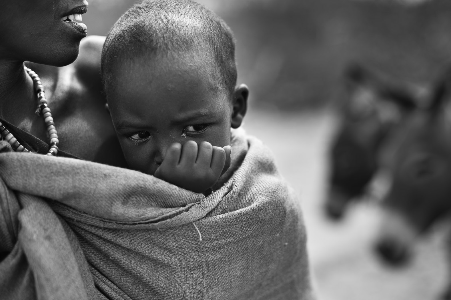Three year-old Sadiya Ali and her mother crossed the Somali-Kenyan border with the rest of their family. Carrying very few belongings on a donkey cart, they are hoping to reach the Kenyan refugee camp of Dadaab - the biggest in the world. There is still around 100km of dusty road ahead of them.