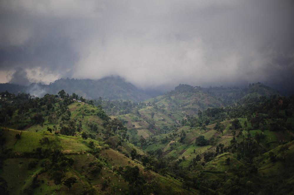 Hills of Masisi territory