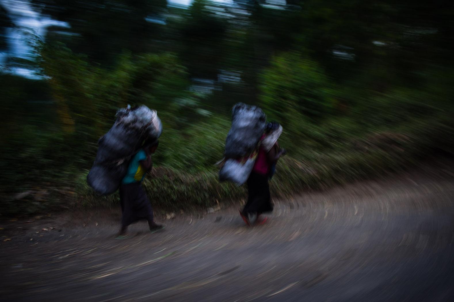 Women carry firewood near Sake