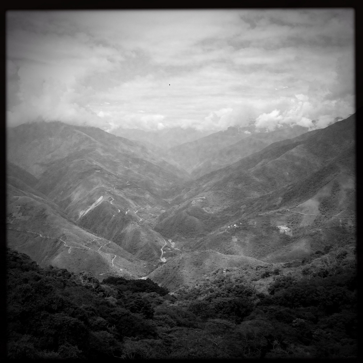 Looking down into Los Yungas