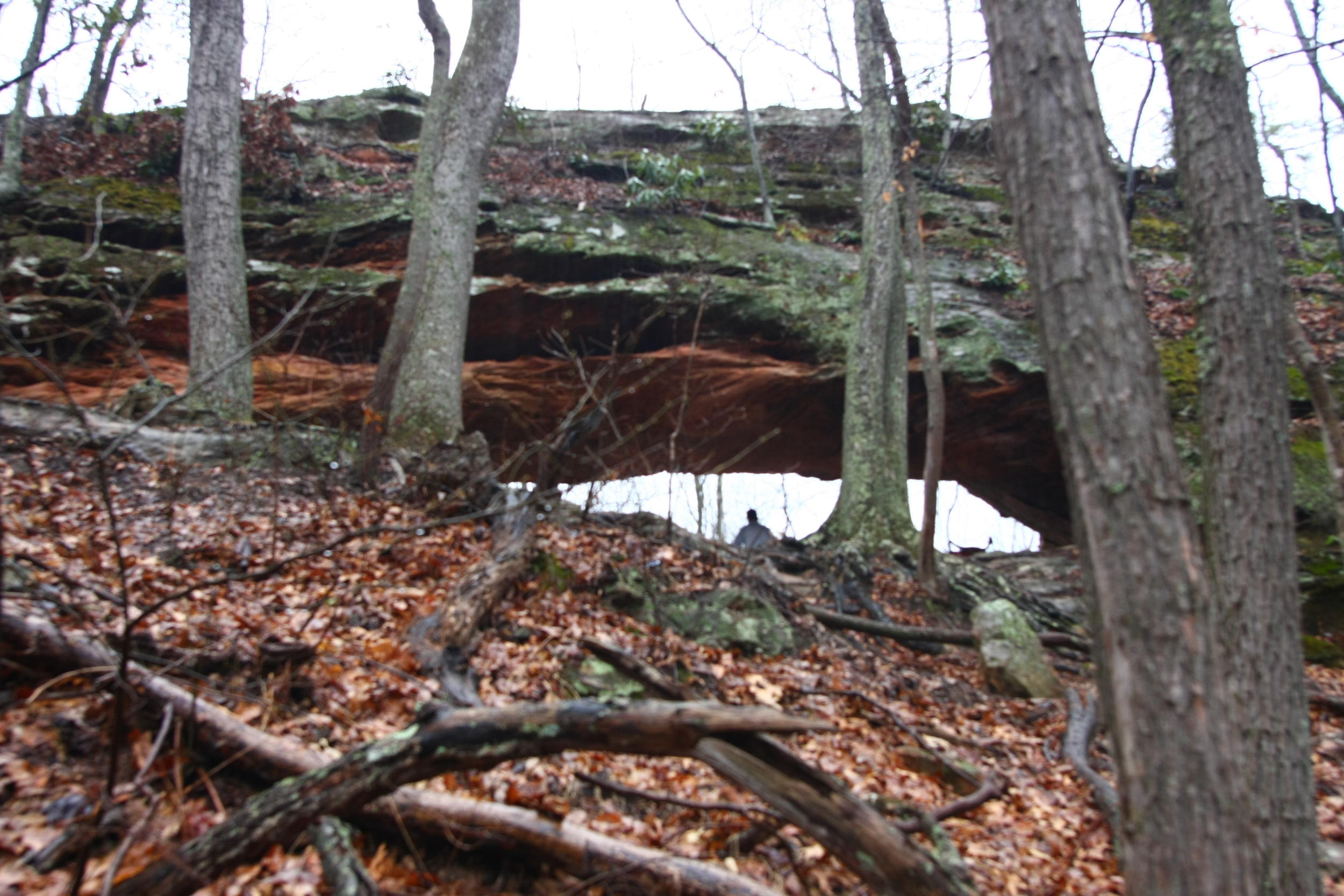 Sheltowee Trip Report - 3: Post Hike