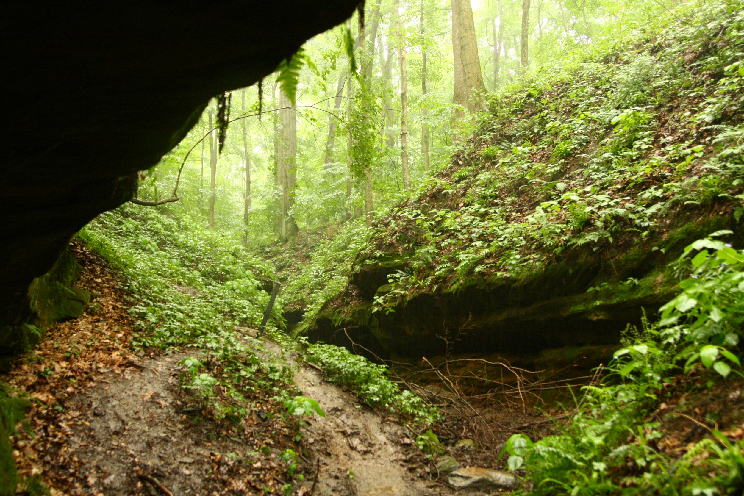 Waiting out the storm in a rock shelter along Trail 4 at Shades State Park.  The rain added an exciting element of adventure to our otherwise routine day hike.
