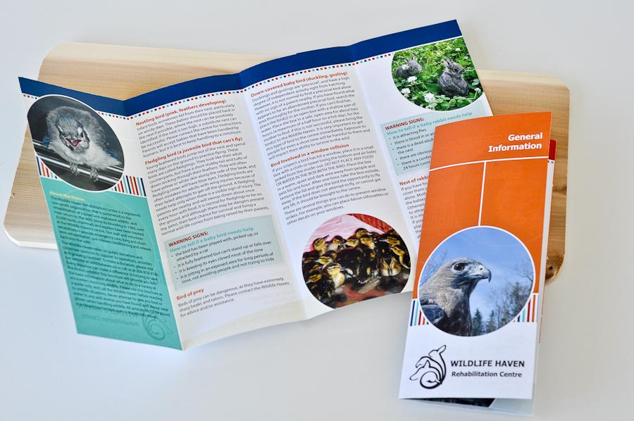 Wildlife Haven brochures