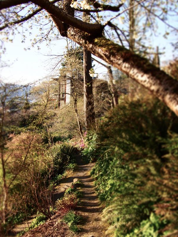 13_0402 Gardnen Path to Home small.jpg