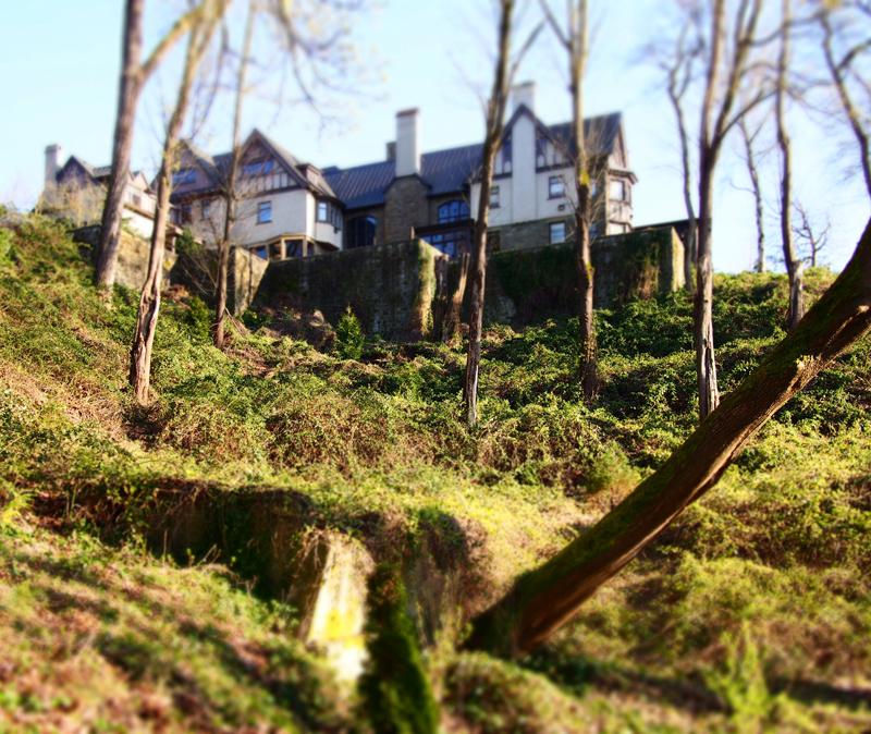 13_0402 St Marks House 1b small.jpg