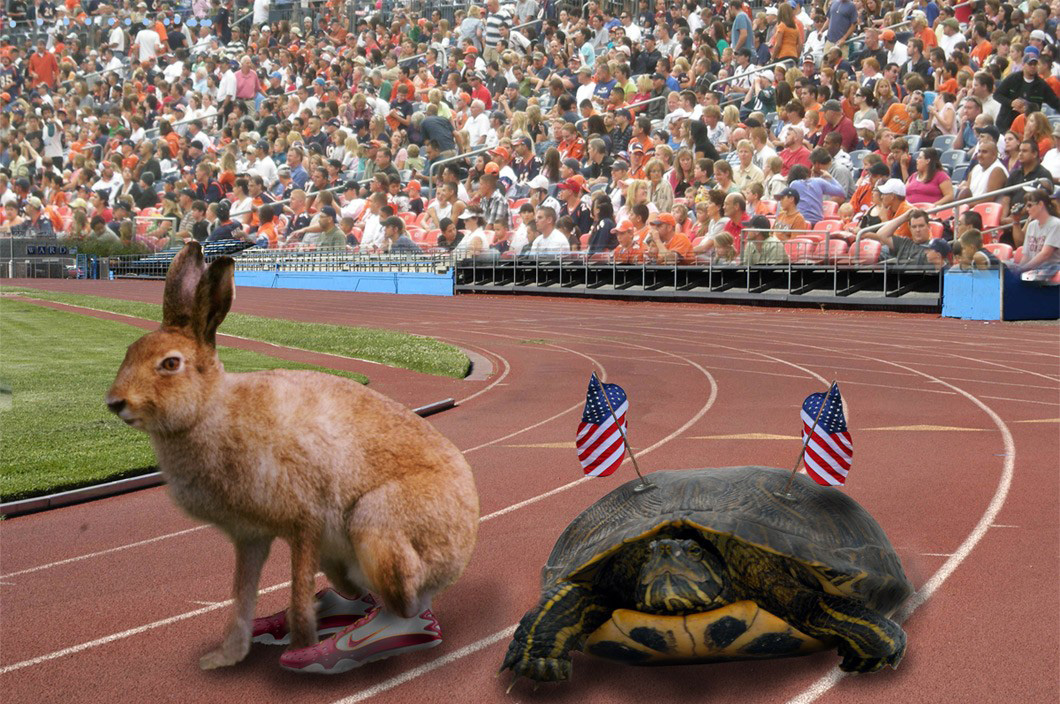 tortise and the hare