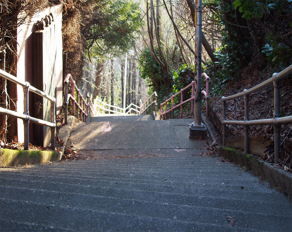 Steep Stairs Small.jpg