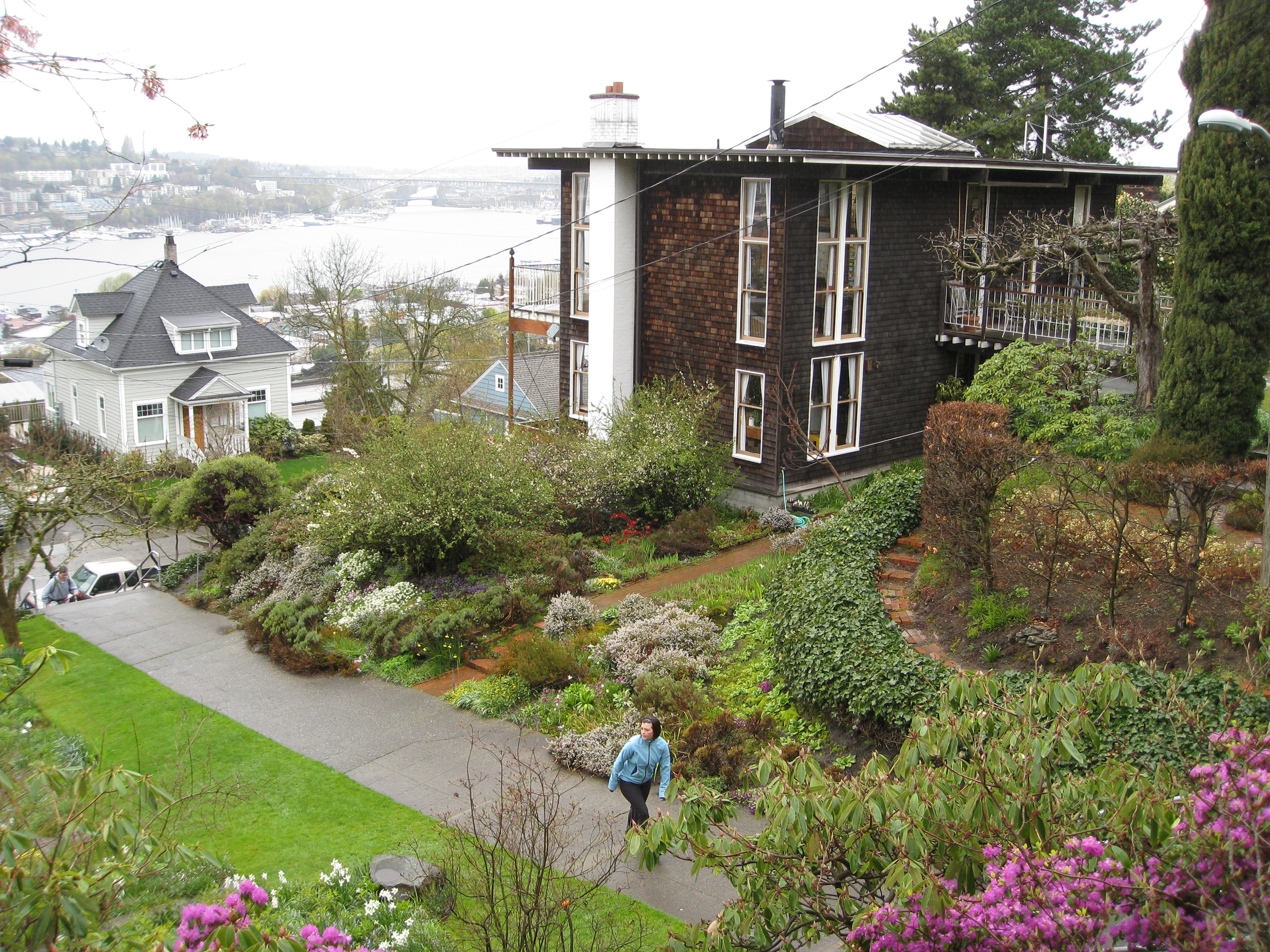 """I love how tucked away this park is – if you're coming from 10th it's easy to miss the stairs that lead down to it.  The hillside gardens are really beautiful and have a wildness to them that I really like. There also is a pretty great view of Lake Union and the Olympic Mountains from the top."""