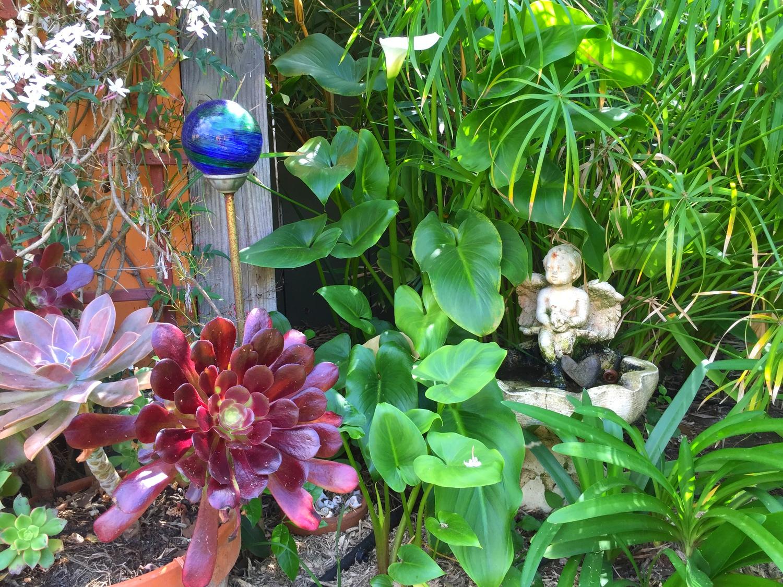 In the Garden~Santa Barbara, CA