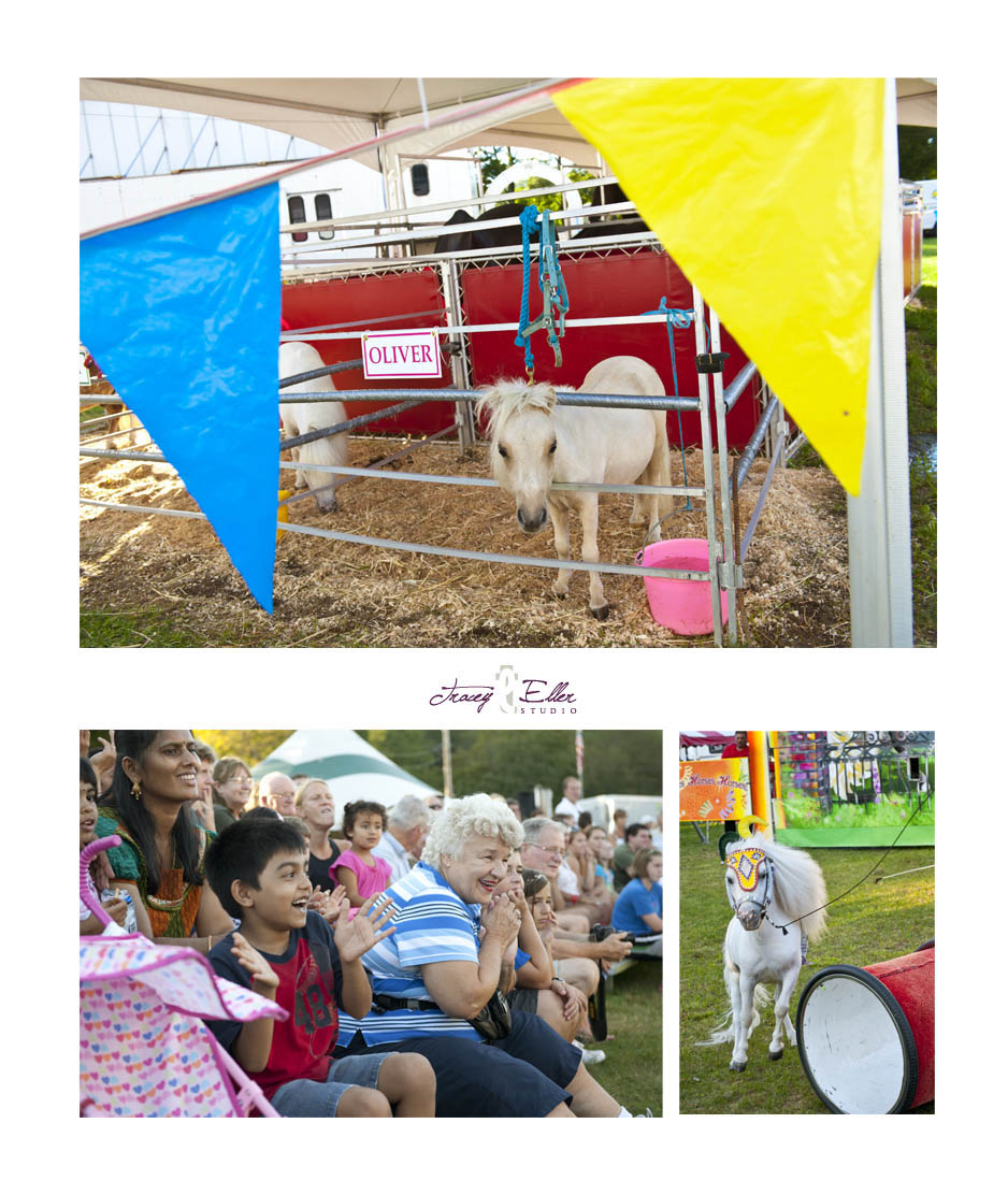 Cummington Fair blog 2