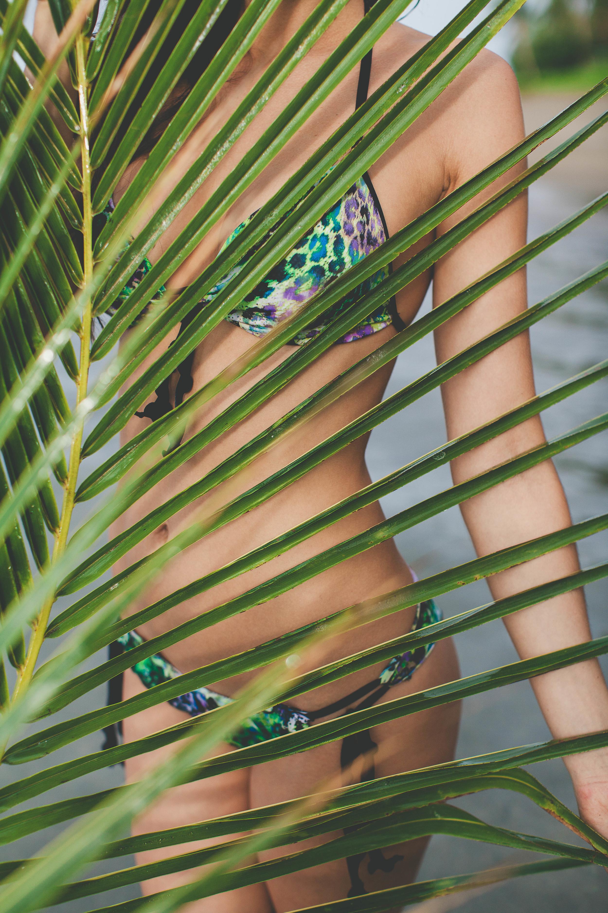 ilha 2013.12.02-17.jpg