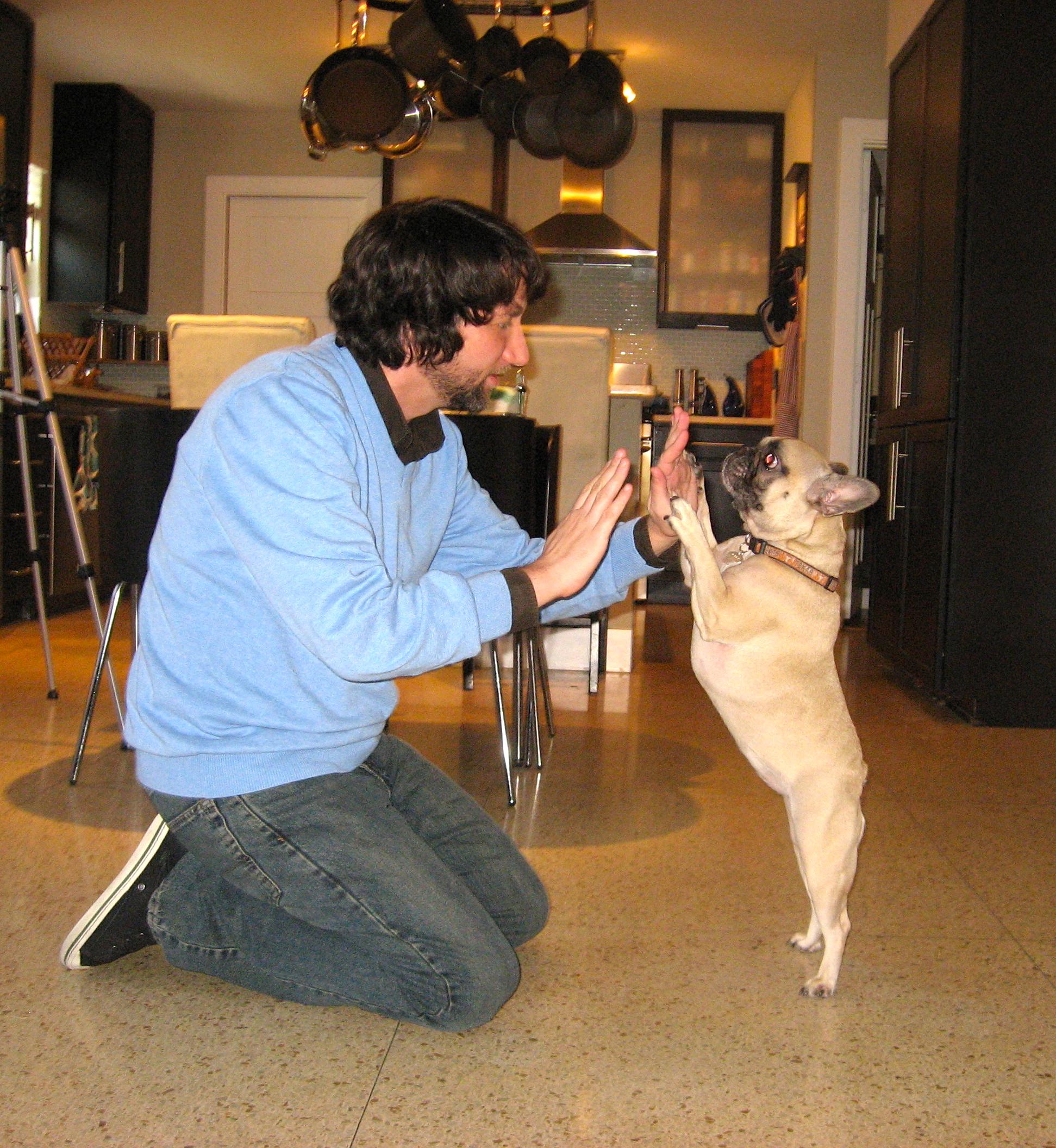 Josh Margolis with French Bulldog Gigi
