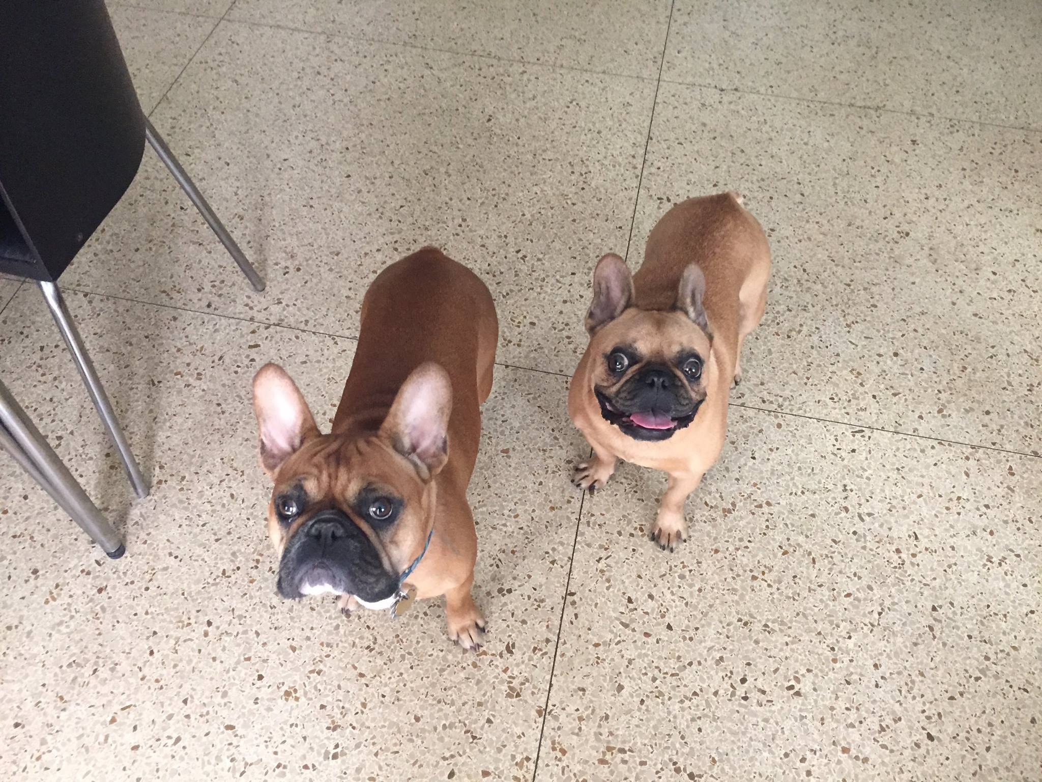 Duncan & Belle