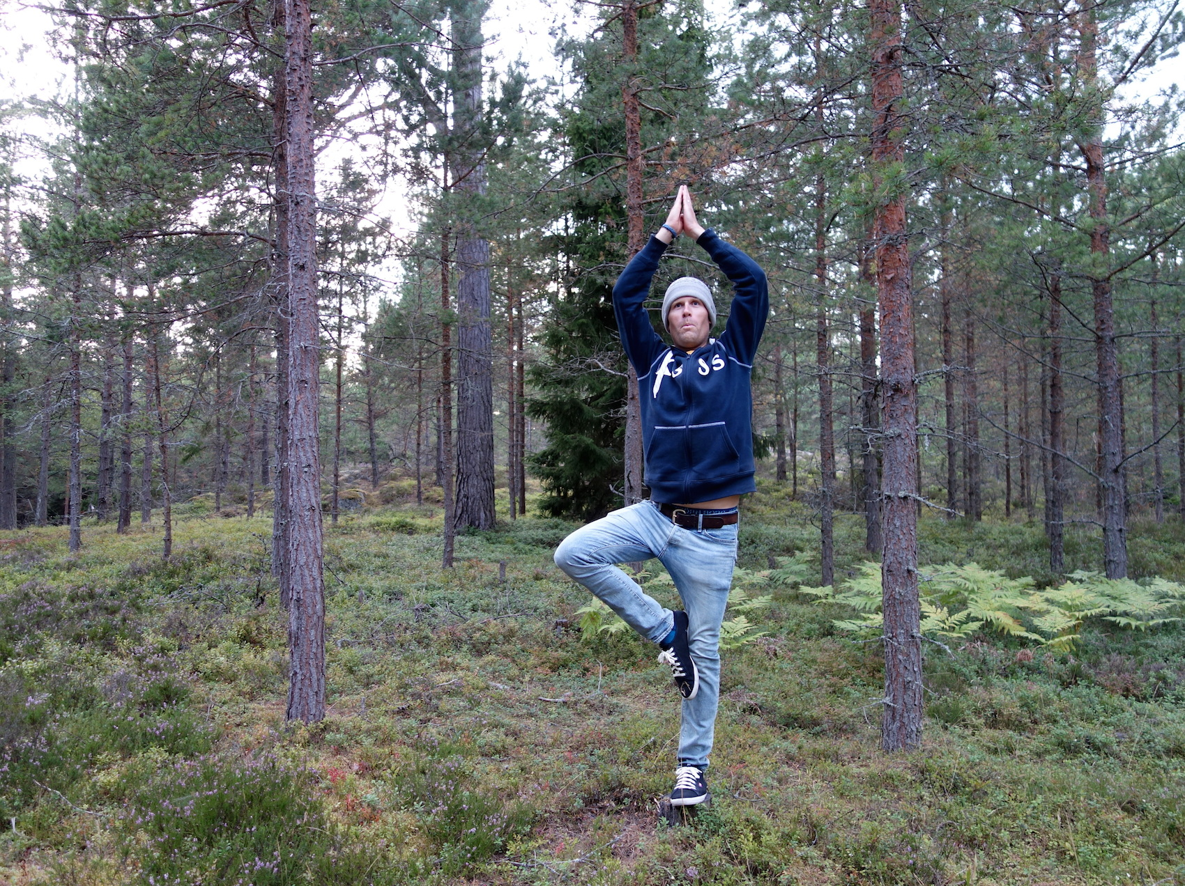 Ett träd bland träden :)