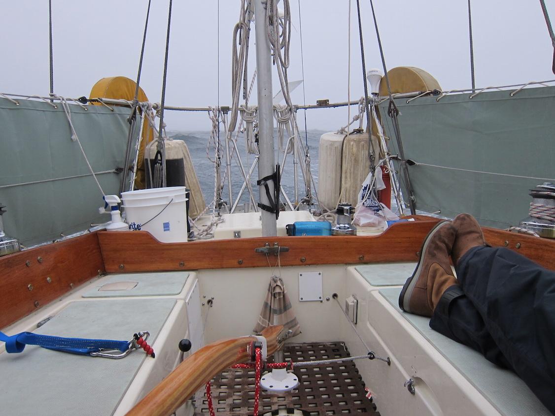 Tiller steering & weather cloths.