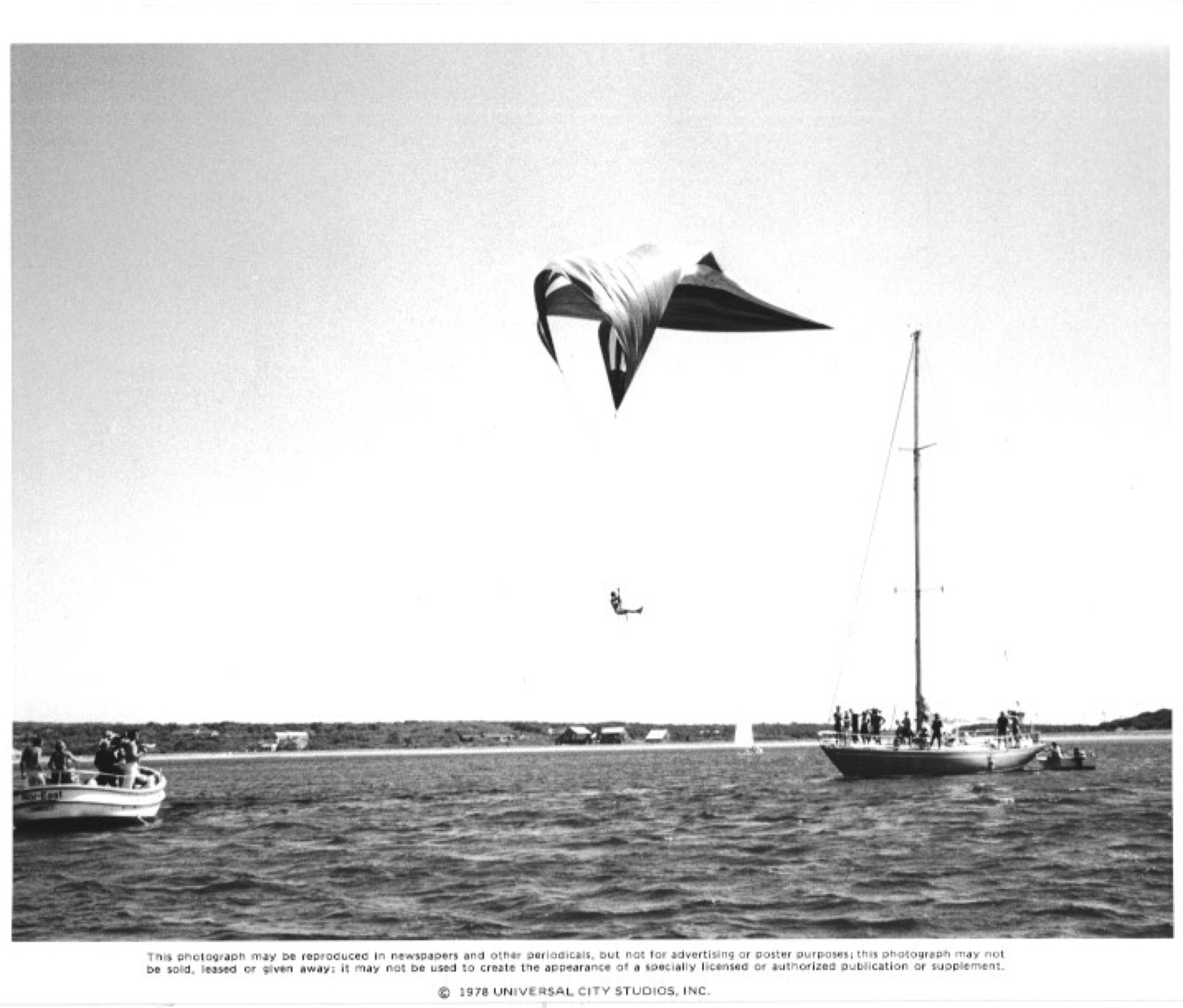 JAWS2 #2.jpg