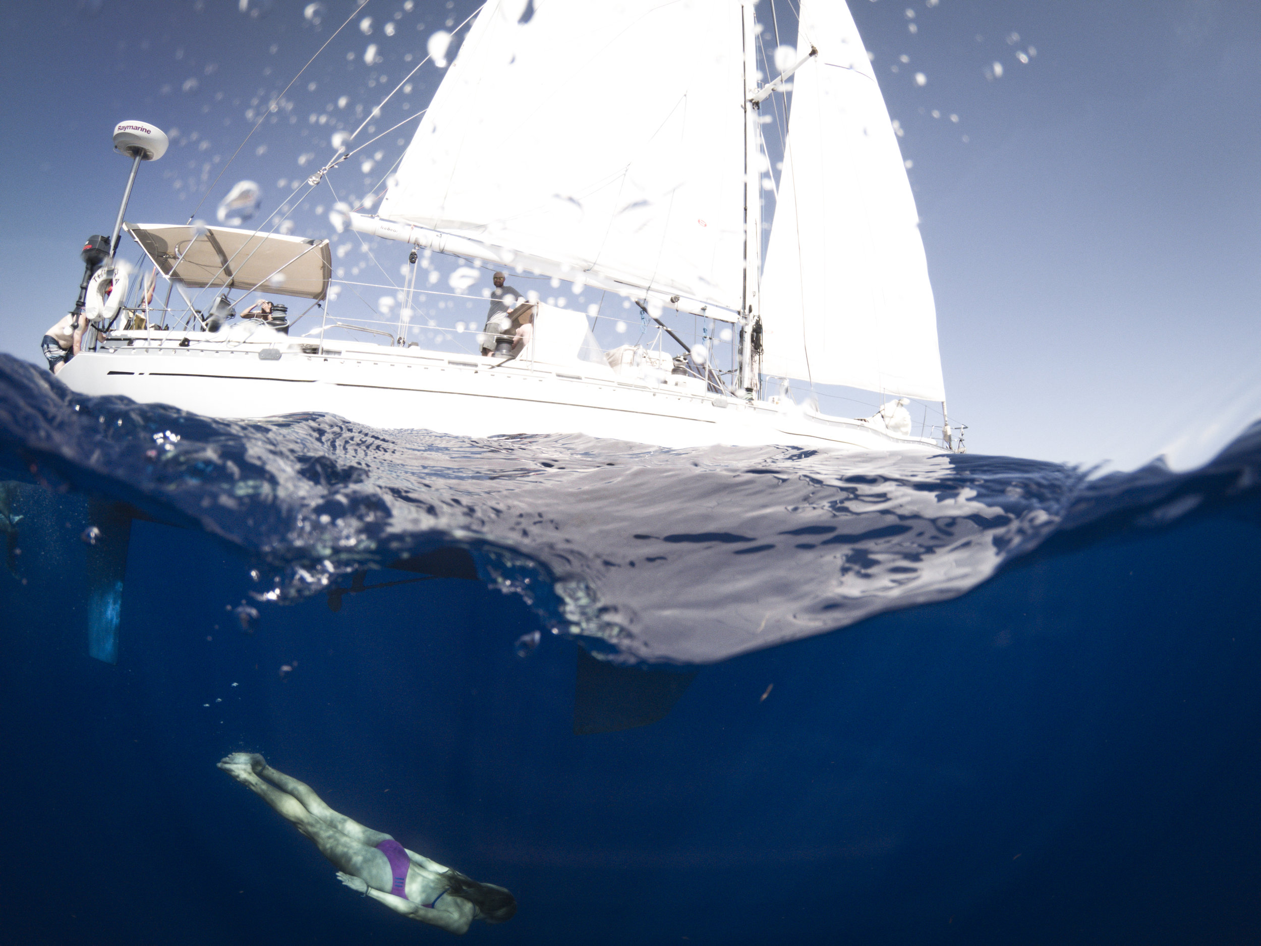 19.04.21_Mia Dolphin Dive.jpg