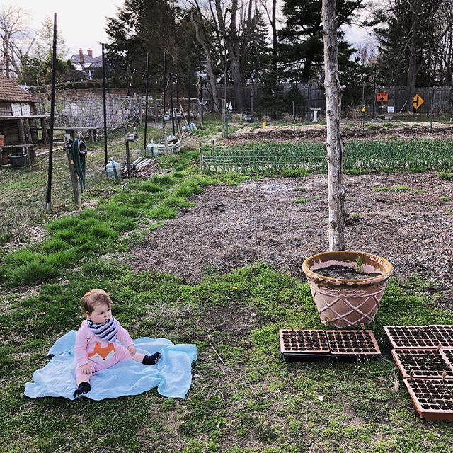 FYI- Babies do not make good farmhands 🤗 #lmgf #springiscoming 💚
