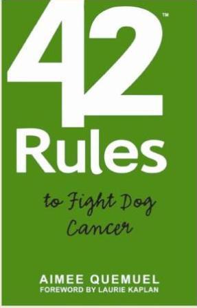Book-42 Rules.JPG