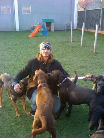 play groups-dogs dig it.jpg